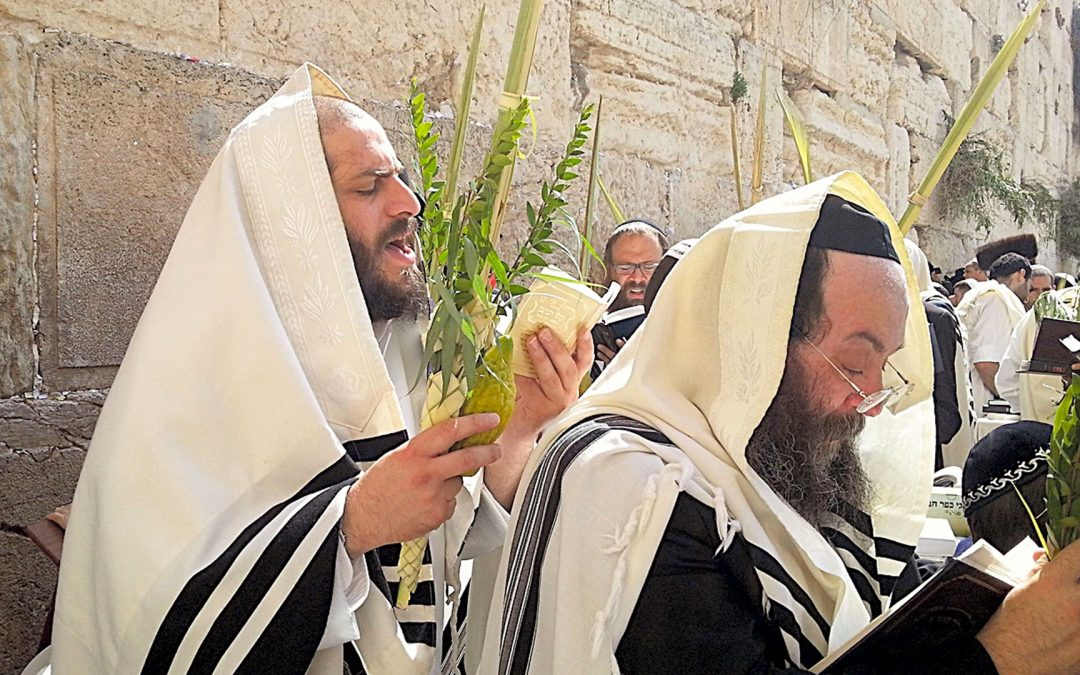 Feast of Tabernacles - Sukkot - Lulav