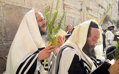 Fifth Encouragement: The Sacrifices, Lulav and Citron Speak of Sweet Lives of Compassion